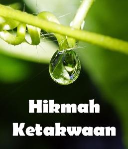 http://carihikmah.files.wordpress.com/2010/03/hikmah-ketakwaan1.jpg?w=257&h=300